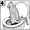 A Feline Toilet-Training Tutorial