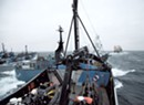 Eco-Warrior Paul Watson Brings Sea Shepherds to Vermont