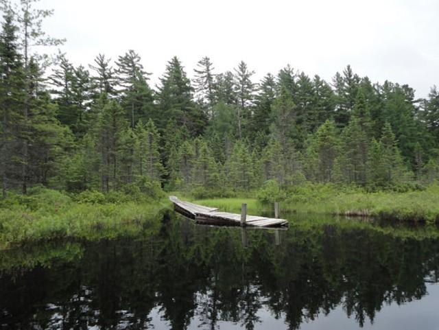 canoetrips3.jpg