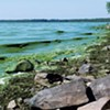 Public Water Systems Watch for Toxic Algae in Lake Champlain