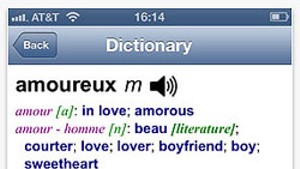 App Review: French-English Dictionary