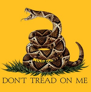dont_tread_on_me_yellow_tfa19001_2_png-magnum.jpg