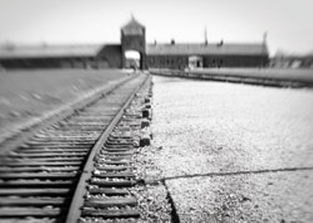 """Auschwitz-Birkenau entrance, view from inside camp 2009"" by Lia Rothstein"