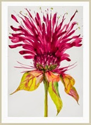 """COURTESY OF COMPASS MUSIC AND ARTS CENTER - """"Bee Balm"""" by Idoline Duke"""