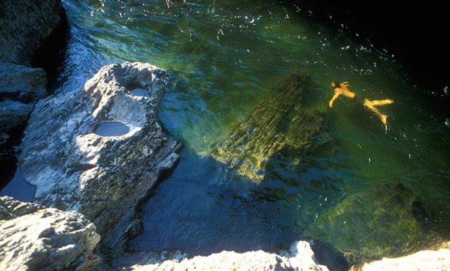Ben Falk snorkeling in the Mad River