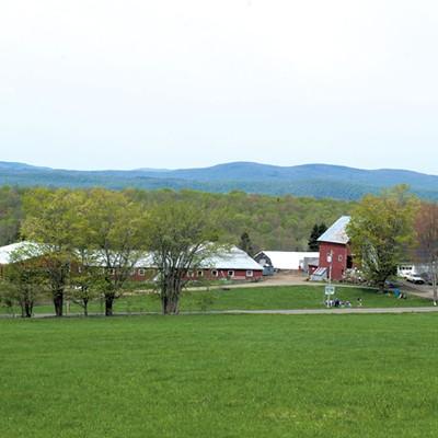 Bonneview Farm