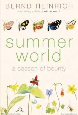 f-book-summer.jpg