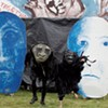 Bread and Puppet and Sterling College Offer Arts and Activism Class