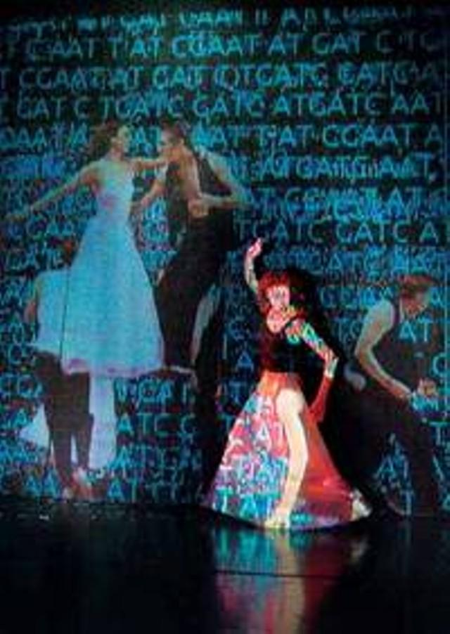 Bridgman/ Packer Dance
