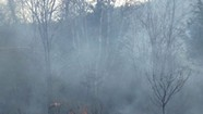Burn Notice: Even in Vermont, a 'Prescribed' Fire Requires Perfect Timing