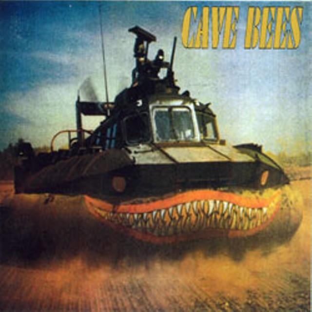 cdreview-cavebees.jpg