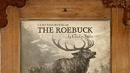 Chicky Stoltz, 'Camp Recording #2 the Roebuck'