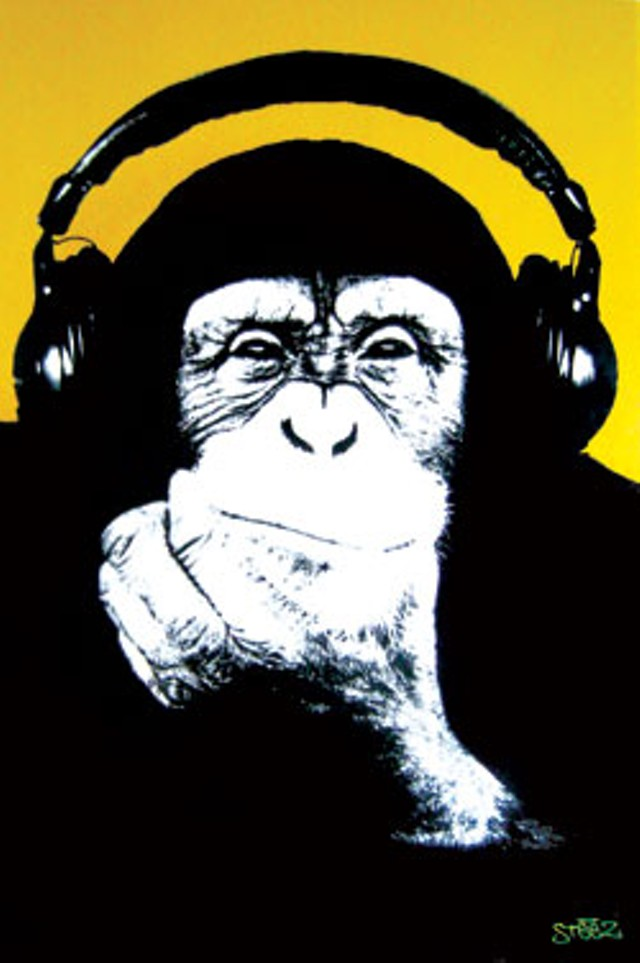 dorm-monkey.jpg