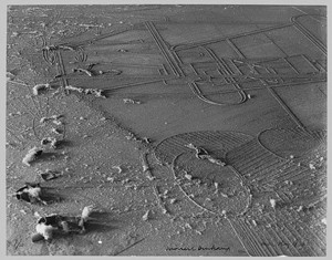 """Dust Breeding"" by Man Ray - COURTESY OF CLARE DOLAN"
