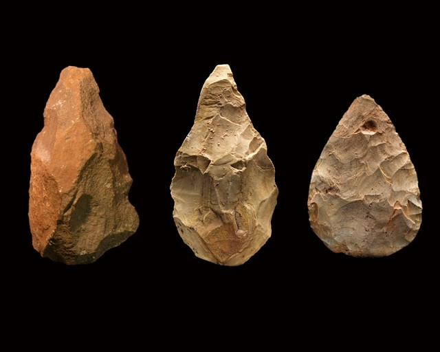 Handaxes from (L to R) Africa (1.6 million years old), Asia (1.1 million years old) and Europe (250,000 years old) - CHIP CLARK, SMITHSONIAN INSTITUTION