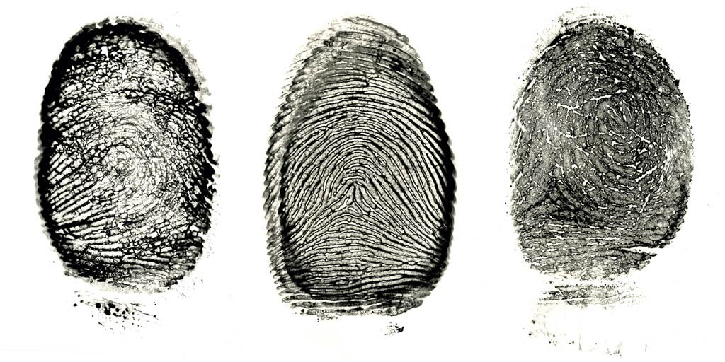 """Fingerprint Series"" by Jordan Douglas"