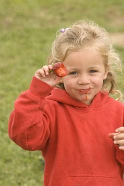 strawberryfestival.jpg