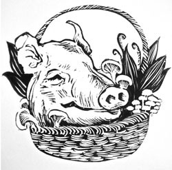 food-pigdrawing.jpg