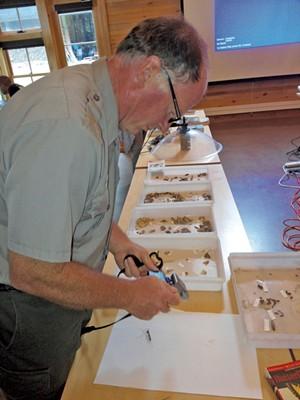 Kyle Jones photographs and catalogs a moth specimen - ETHAN DE SEIFE