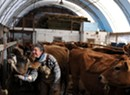 Raw Deal? Farmers Push Back Against Unpasteurized Milk Regulations