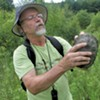 Uncovering Vermont's Elusive Wood Turtles With Mark Powell
