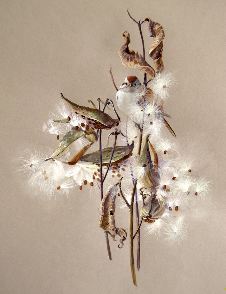 """""""Milkweed and Tree Sparrow,"""" by Susan Bull Riley - COURTESY OF SUSAN BULL RILEY"""