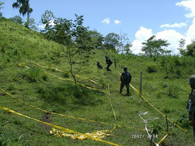 Mine-detection dogs, like the one above searching a hillside in Nicaragua,