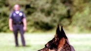 Snooping Doggie Dogg: On the beat with a canine cop