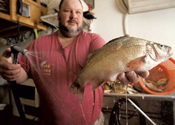 Why a State Obsessed With 'Local' Doesn't Eat Vermont Fish