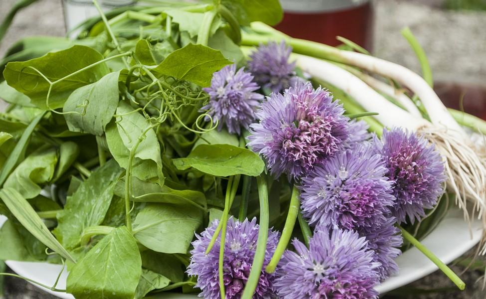 Pea shoots, blooming chives and green garlic - HANNAH PALMER EGAN