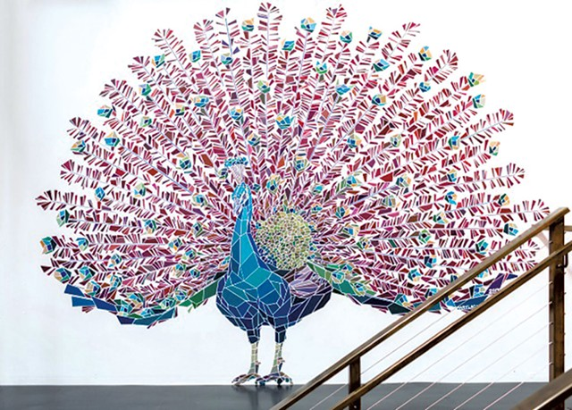 """""""Peacock"""" by Mary Lacy"""