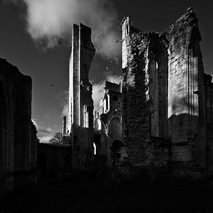"COURTESY OF DARKROOM GALLERY - ""Ruins Jumieges, Normandy"" by Geoffrey Agrons"