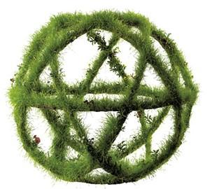 """Seed"" - COURTESY OF ETHAN BOND-WATTS"