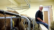 A Longtime Dairyman Thinks Big — and Goes Small