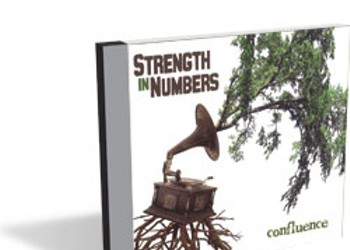 Strength in Numbers, Confluence