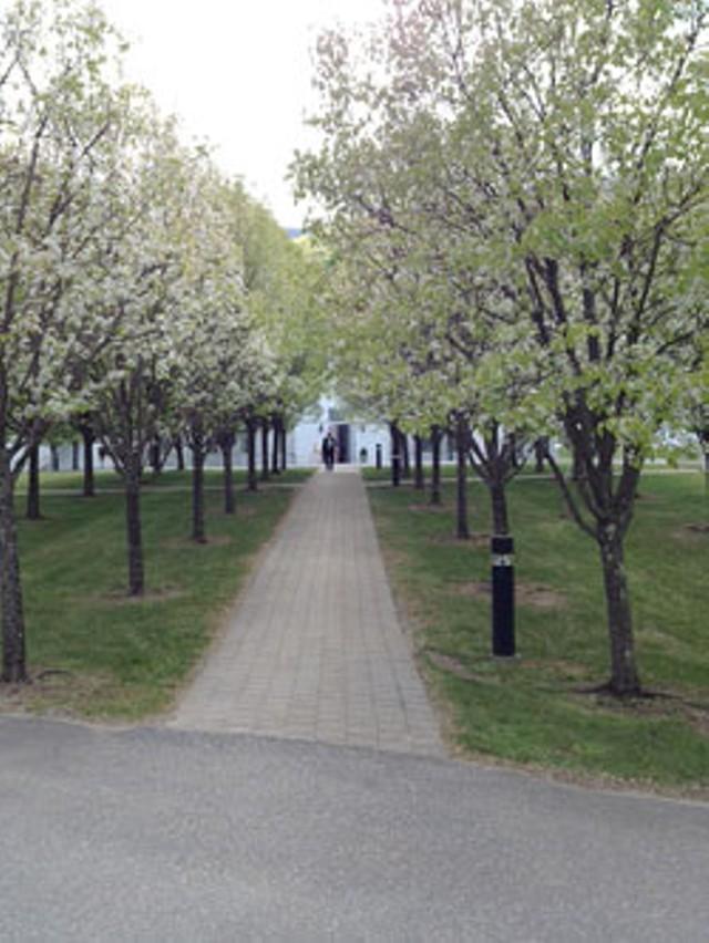 SVAC, main entrance
