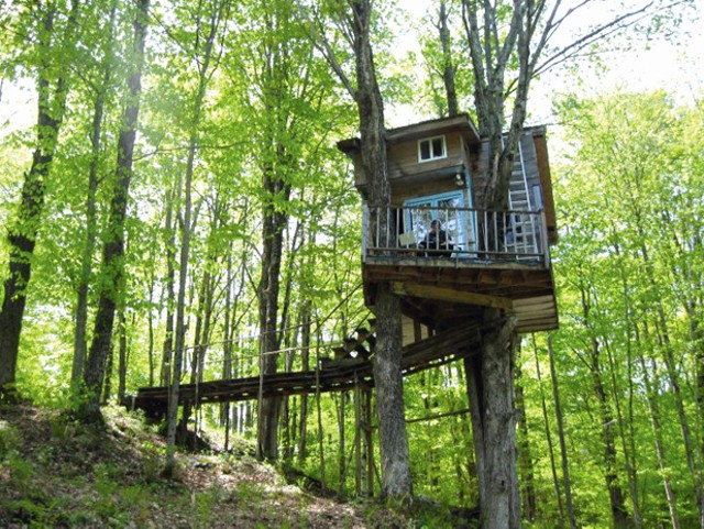 The Bryant/Reynolds tree house