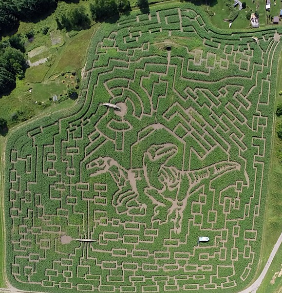 The Great Vermont Corn Maze in Danville - COURTESY OF MIKE BOUDREAU