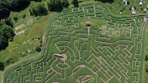 The Great Vermont Corn Maze in Danville