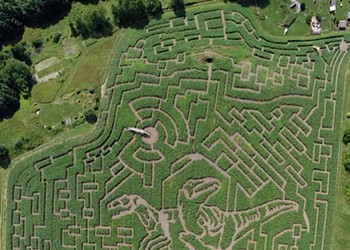 The Great Vermont Corn Maze Goes All Raptor on Us
