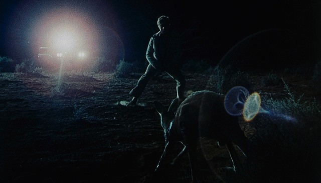The notorious kangaroo hunt - DRAFTHOUSE FILMS