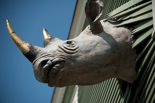The rhino at Conant Metal & Light - COURTESY OF NATALIE WILLIAMS