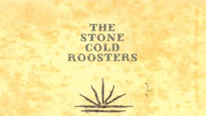 The Stone Cold Roosters, Back in the Bog