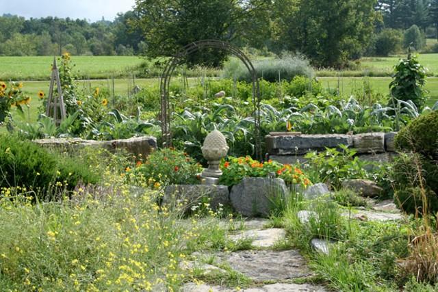Tom and Lori Delia's garden