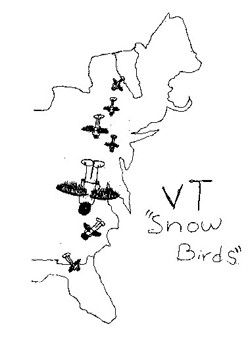f-comics-winner-snowbirds.jpg