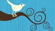 Tweet Surrender