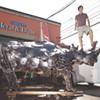 Tyler Vendituoli's Scrap-Metal Rhino Looms Large in Burlington