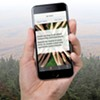 A Smartphone App Connects Green Up Day Vermont Volunteers
