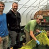 Cultivating Spirulina on a Vermont Farm