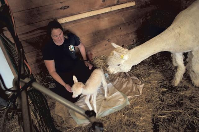 Jennifer Lutz helping Bitsy to her feet - HANNAH PALMER EGAN